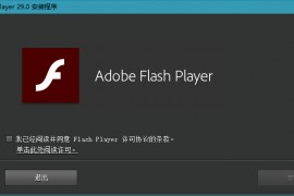 Adobe Flash Player 29.0.0.113官方正式版